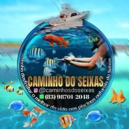 Título do anúncio: Passeio e mergulho piscinas naturais do Seixas