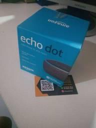 Echo Dod, Alexa