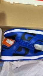Nike dunk low cobalt