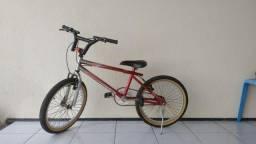 Bicicleta Aro 20 e Suporte p/ Carro