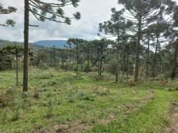 Título do anúncio: Belíssimo terreno de montanha em Urubici