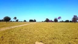 Fazenda 1485 ha Barra do Bugres MT