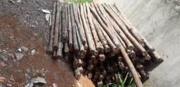 Escoras de eucalipto (R$ 1 / metro)