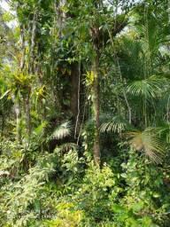 Terreno 450m2 em Itapoa SC (R$29.900,) pra essa semana