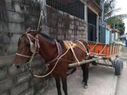 Título do anúncio: Cavalo e carroça