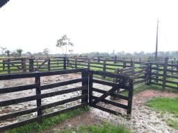 Ótima fazenda na região da Vila Campinas 60km da Capital