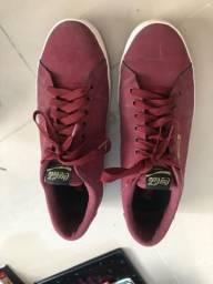 Sapato cola shoes