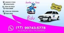 Título do anúncio: Bidu Banho e Tosa
