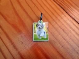 Título do anúncio: Plaquinha de Polímero com nome ou Foto do seu Pet