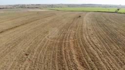 Fazenda para venda em Mirandopolis-SP, região de Andradina e Araçatuba, com 265 alqueires,