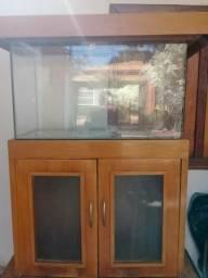 Aquario de madeira de lei