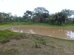 Alugo chácara 3 minutos do centro, 2 hectares