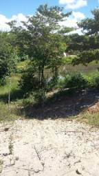 Terreno em Ilha de Vera Cruz