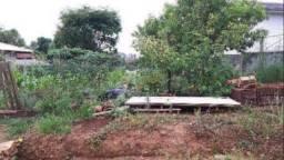 Terreno à venda, 383 m² por r$ 132.500,00 - santa cruz - xanxerê/sc
