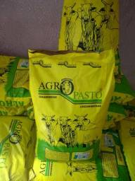 Promoção sementes para pastagem