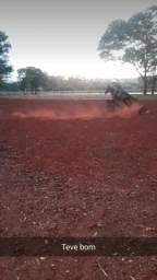 Cavalo prova de tambor