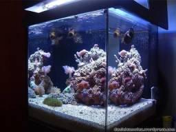Título do anúncio: Vidro de aquário 280 litros e rochas