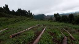 Título do anúncio: Vendo propriedade rural