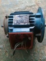 Título do anúncio: Motor trifásico (1 cv) 1730 rpm