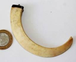 Amuleto Pingente Com Dente Javali Guarnecido Com Prata 900