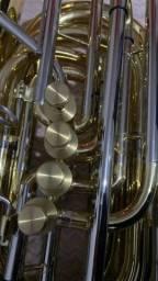 Título do anúncio: Tuba wntu1 sib