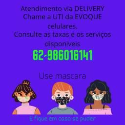 Assistência técnica especializada via DELIVERY