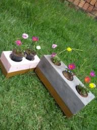 Plantas, Suculentas, vasos decorativos