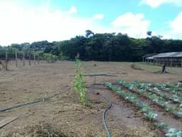 Terreno com Granja em pleno funcionamento em Iranduba