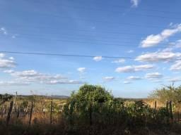 Vendo terreno no Distrito Baixio das Palmeiras, Crato- Ce