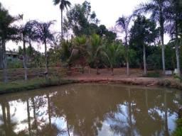 Título do anúncio: Sitio mini fazenda- Tanabi 1 alqueire- linda, um sonho!!!