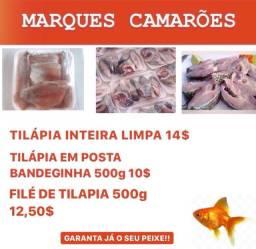 Vende-se peixe tilapia