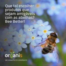 Título do anúncio: Mel flor de angico, multifloral, nibs de cacau, cremoso e própolis, tudo orgânico