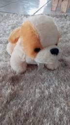cachorropeluciapromoçao