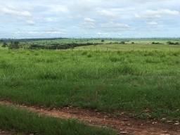 Vende-se Fazenda 52 - Alq. (Cid. Fernandópolis - SP)