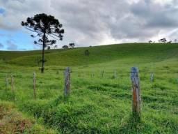 Terreno rural de 167.000 m² na Serra da Mantiqueira com à 1.200 m de altitude