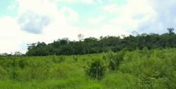 Fazenda com 853hc região Roxinho, excelente pecuaria de ingorda, piscicultura,