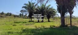 Fazenda em Machadinho 208 Alqueires