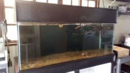 Aquario 150x50x60