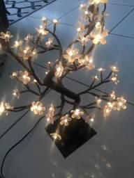 Iluminaria