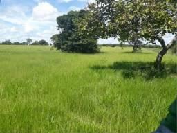 Preciso Alugar Fazenda de 10 a 50 alq , Araguapaz, Mozarlandia, Aruanã