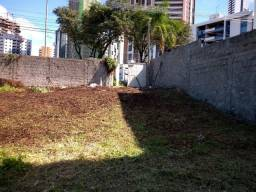 Limpamos terreno e Jardim manutenção de Jardim