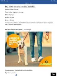Personal pet