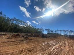 Título do anúncio: G122 Vendo terreno Plaino de 500m² em Ibiúna