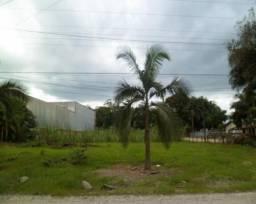 Terreno Industrial Joinville