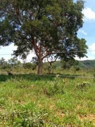 Fazenda 250 hectares em buritis mg e ha 235 km de Brasília df