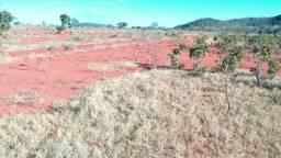 Fazenda 89 Alqueires Israelândia-GO Soja Dupla aptidão