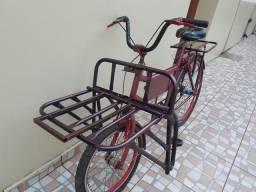 Bicleta Cargueira