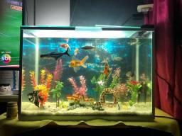 Título do anúncio: Vendo aquário completo