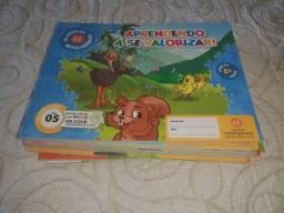 Kit 9 Livros Ei Escola Da Inteligência 2° Período 4 E 5 Anos