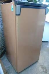 Freezer 230L da Consul